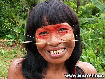 Matses Tribal